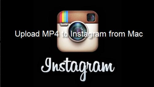 Upload MP4 to Instagram